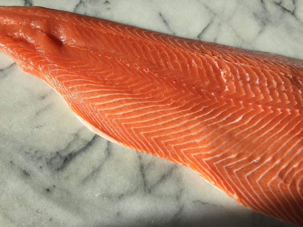 Salmon (Side)