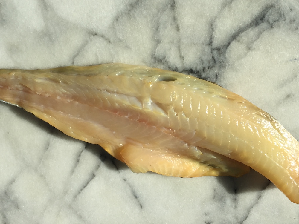 Smoked Haddock (Fillets)
