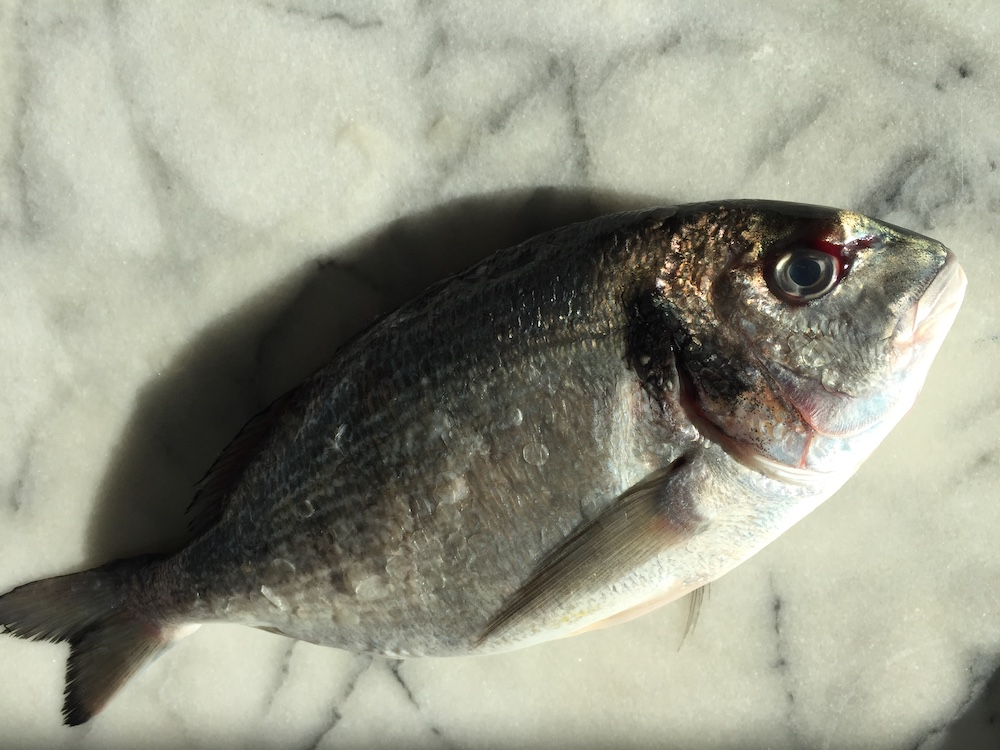 Sea Bream (Whole Fish)