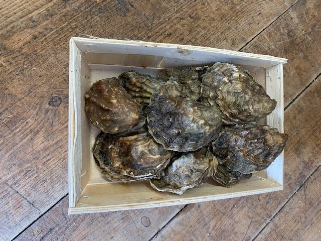 Colchester Rock Oysters Box Of 12