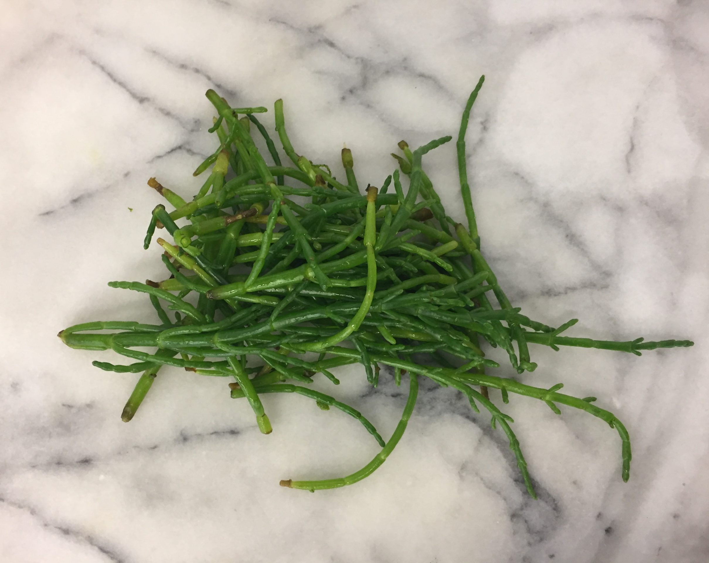 Wild Marsh Samphire 100g